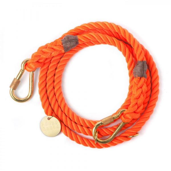 FOUNDMYANIMAL Tauleine orange